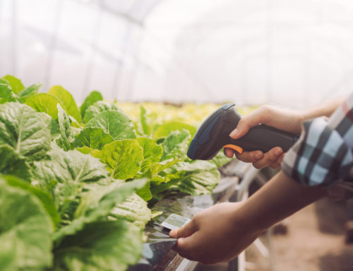 How Do I Know If I'm Adopting the Right Technology For My Farm?