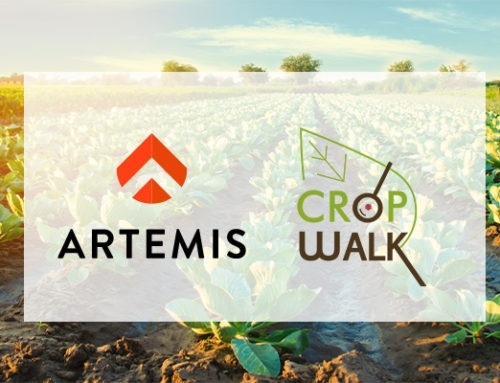 Allison Kopf Talks Cultivation Management on CropTalk