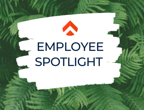 Employee Spotlight: David Radzinsky