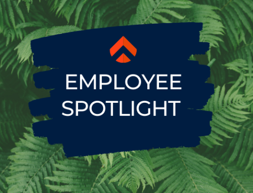 Employee Spotlight: Vincent Bilbeissi
