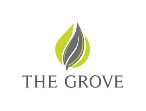 Q&A: The Grove